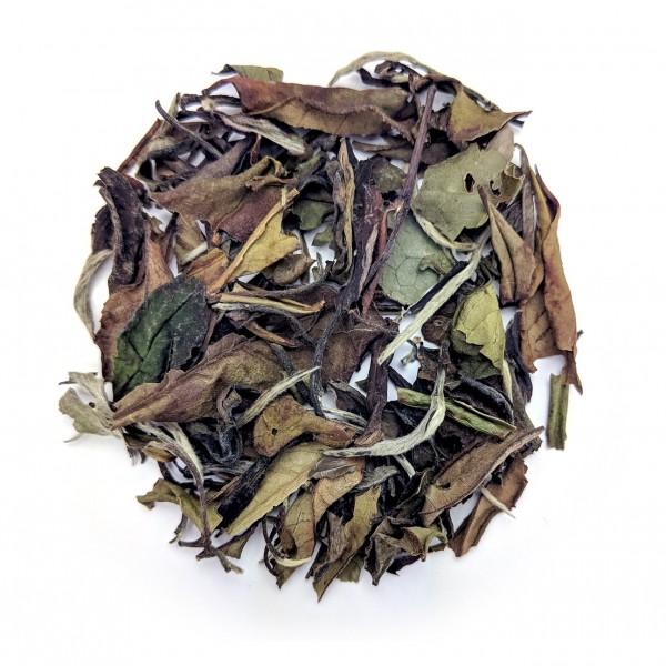 Bai_Mu_Dan_Standard_Organic_White_Tea_Dry_Leaf | Teas_Etc