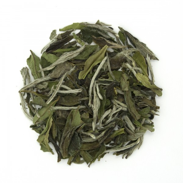 Bai Mu Dan Superior Organic White Tea