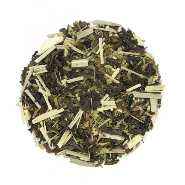 Mint Fusion Organic Black Tea